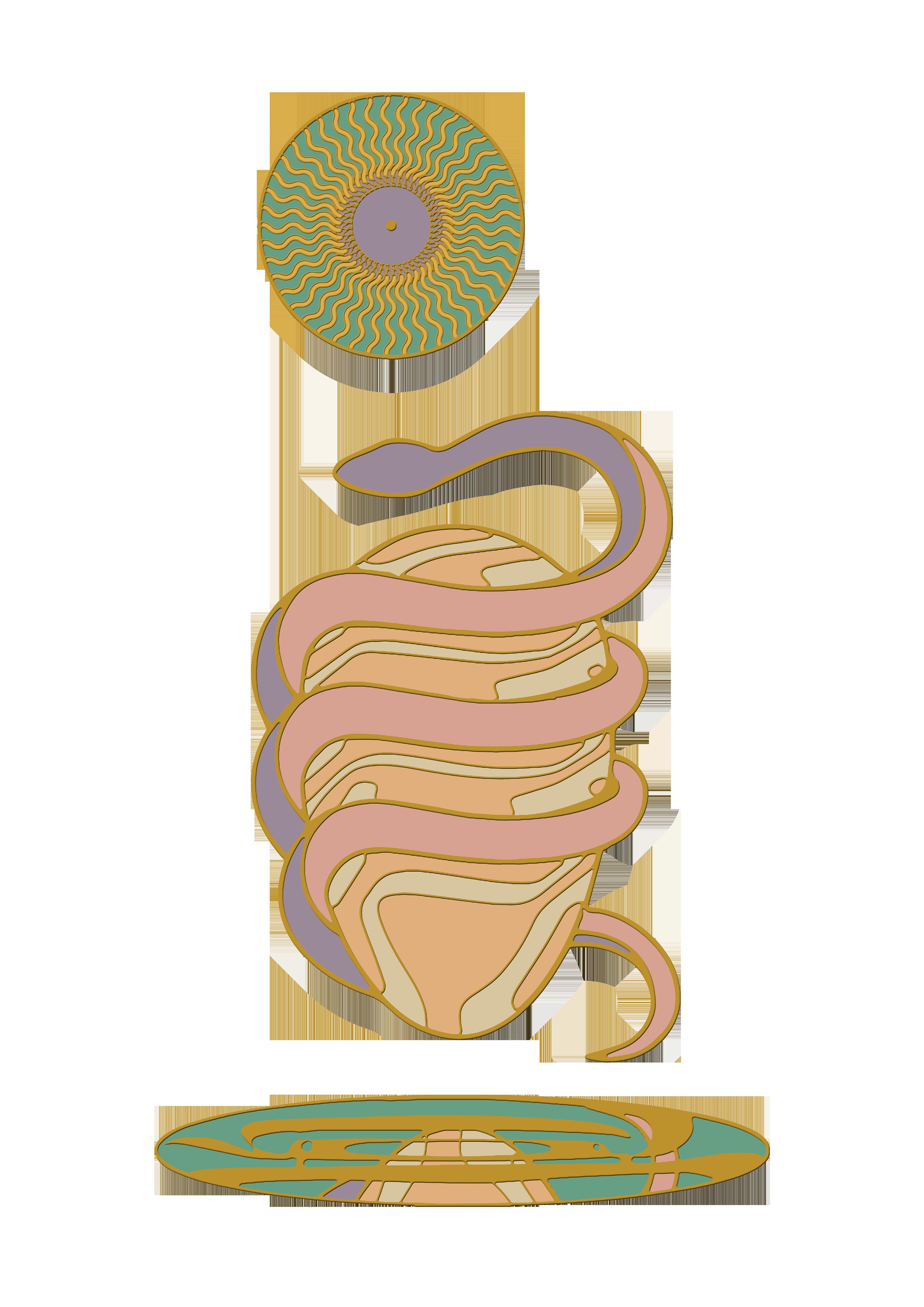 Cosmic egg front