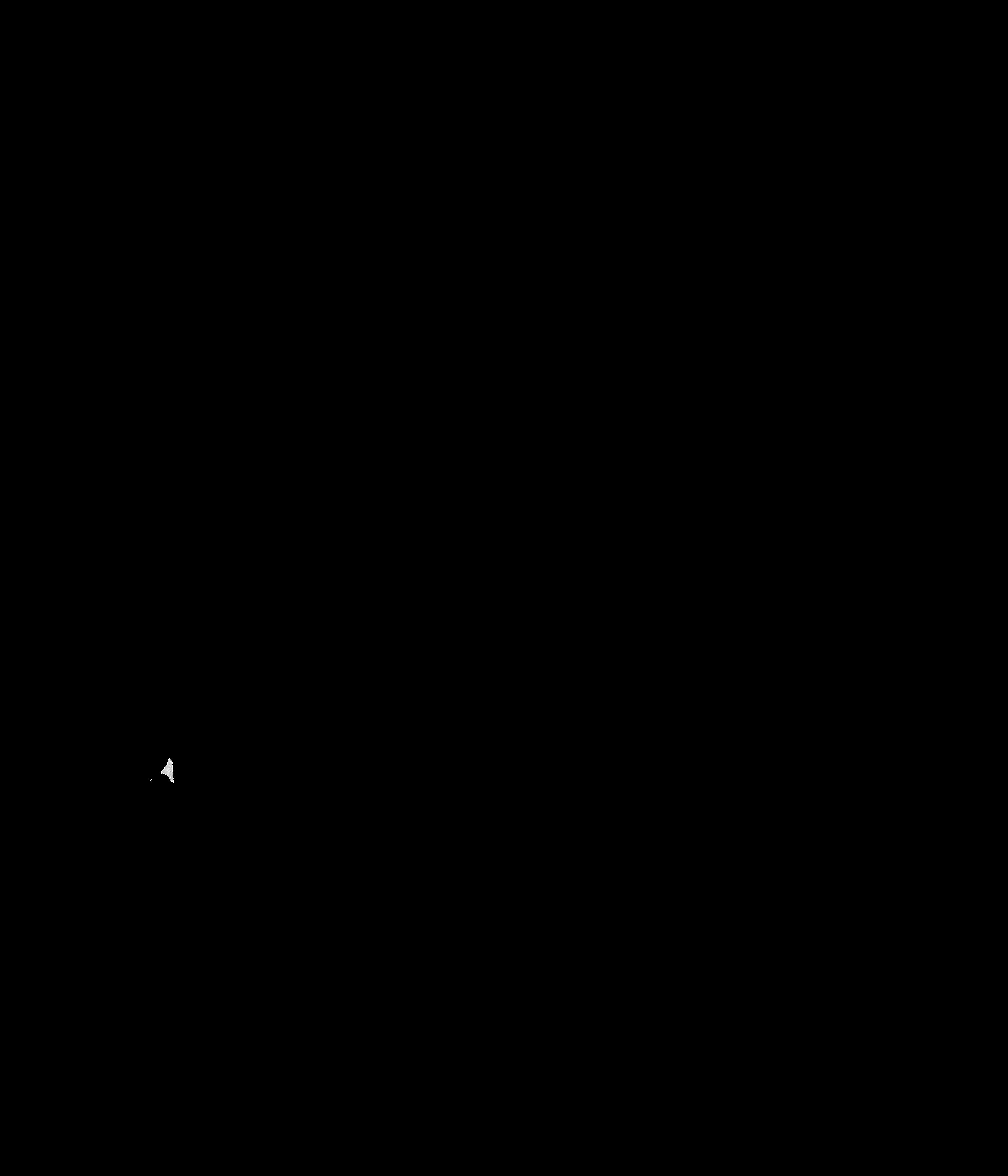 He%cc%81loi%cc%88se geslain   black on white
