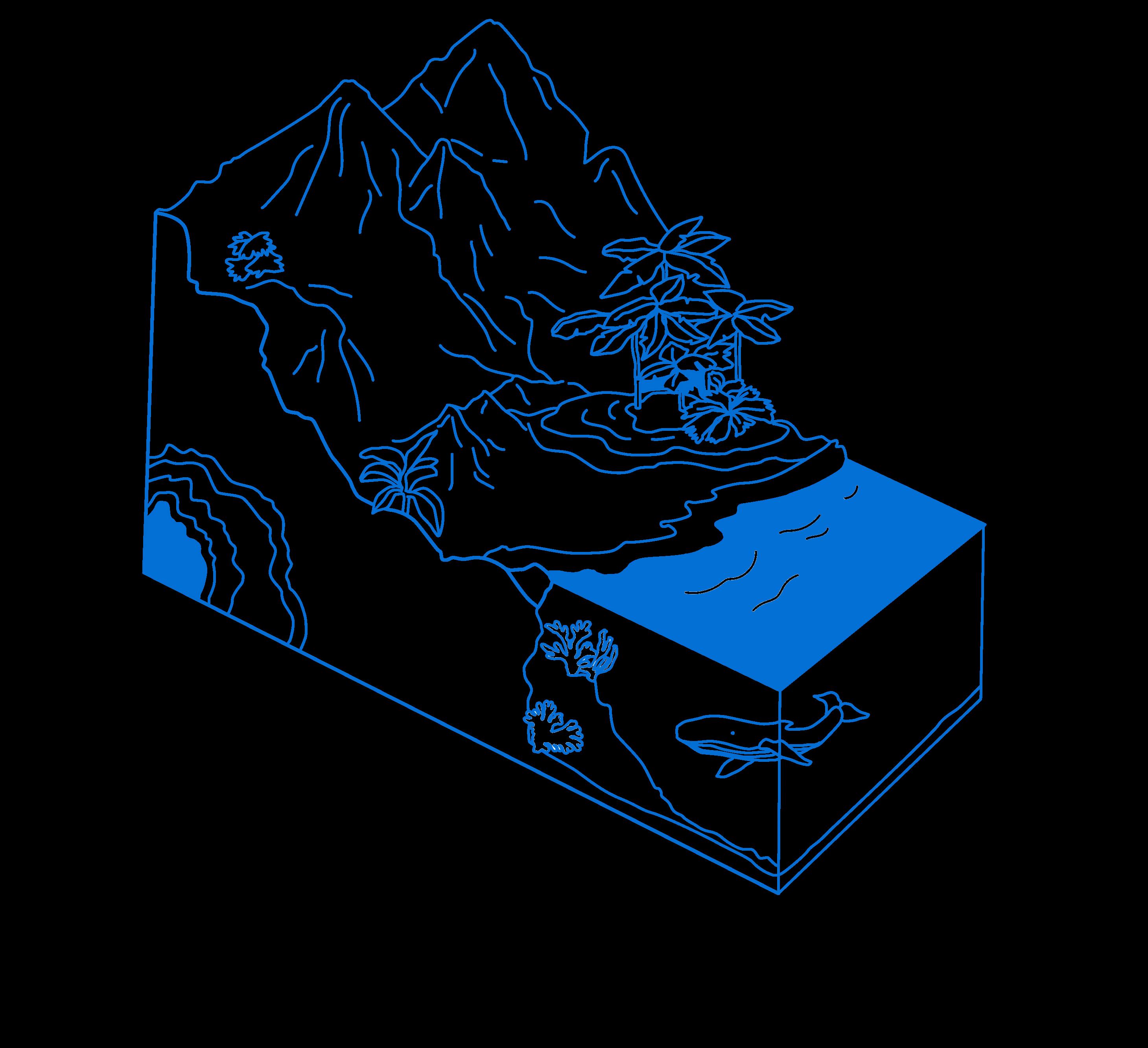 Blue1 transparent